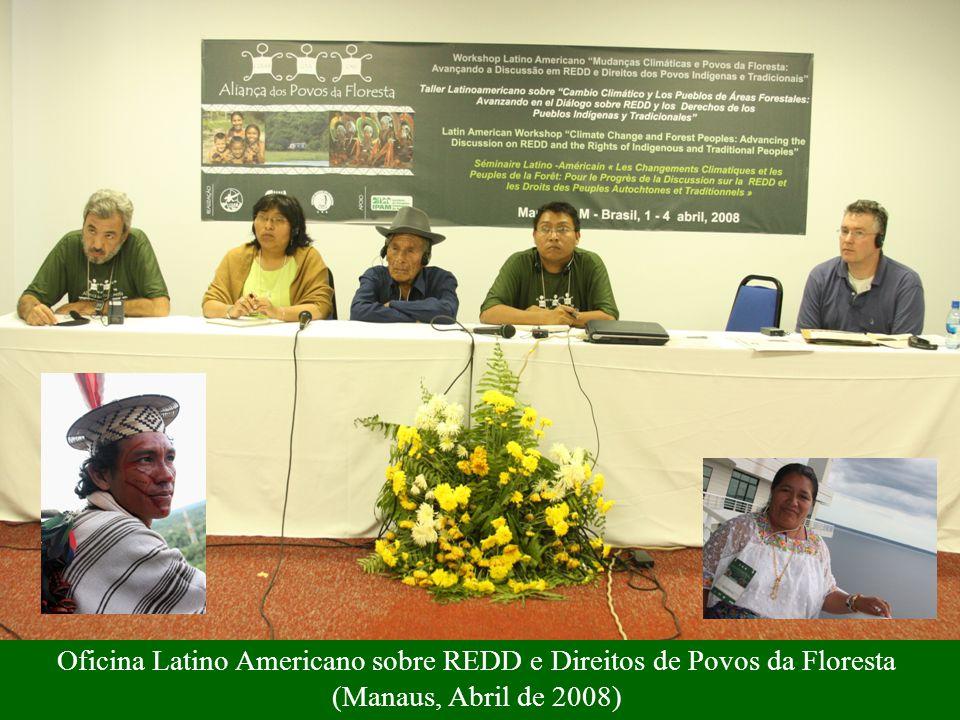 Oficina Latino Americano sobre REDD e Direitos de Povos da Floresta (Manaus, Abril de 2008)