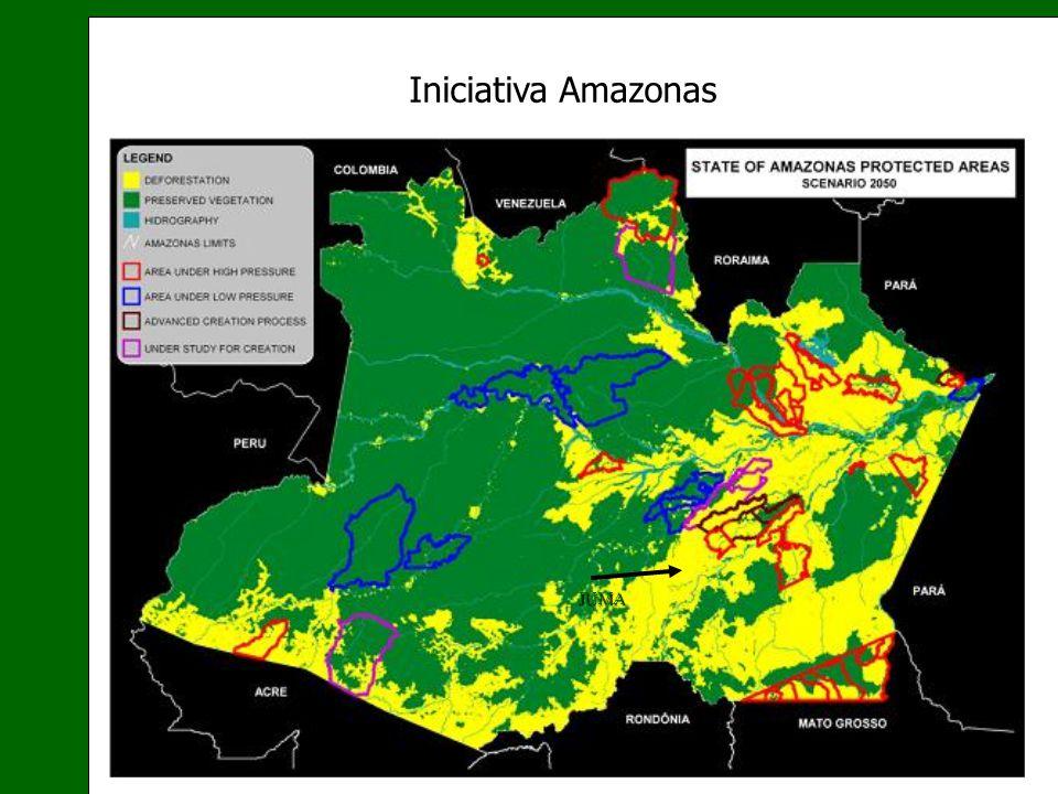 Iniciativa Amazonas JUMA