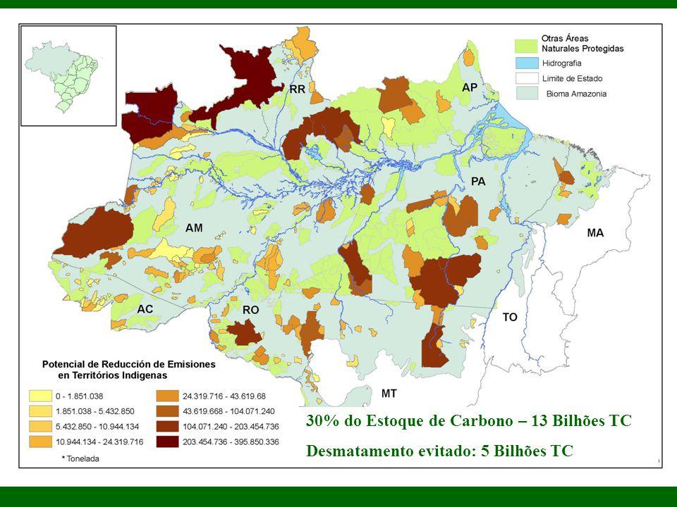 30% do Estoque de Carbono – 13 Bilhões TC Desmatamento evitado: 5 Bilhões TC