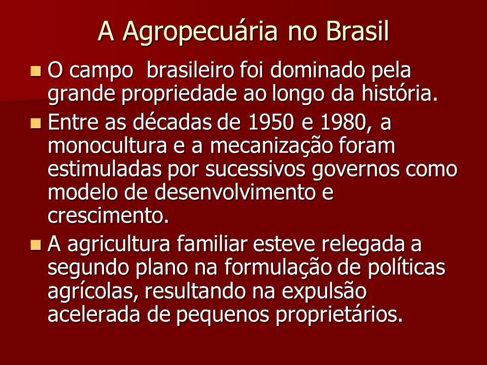 A Agropecuária no Brasil  O campo brasileiro foi dominado pela grande propriedade ao longo da história.  Entre as décadas de 1950 e 1980, a monocult