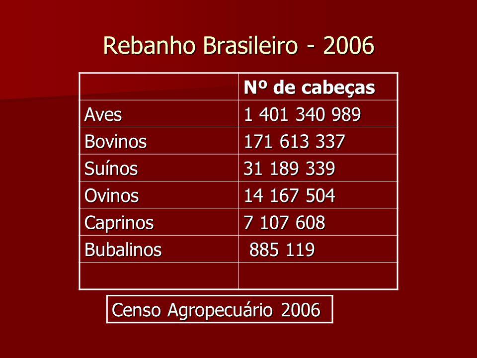Rebanho Brasileiro - 2006 Censo Agropecuário 2006 Nº de cabeças Aves 1 401 340 989 Bovinos 171 613 337 Suínos 31 189 339 Ovinos 14 167 504 Caprinos 7
