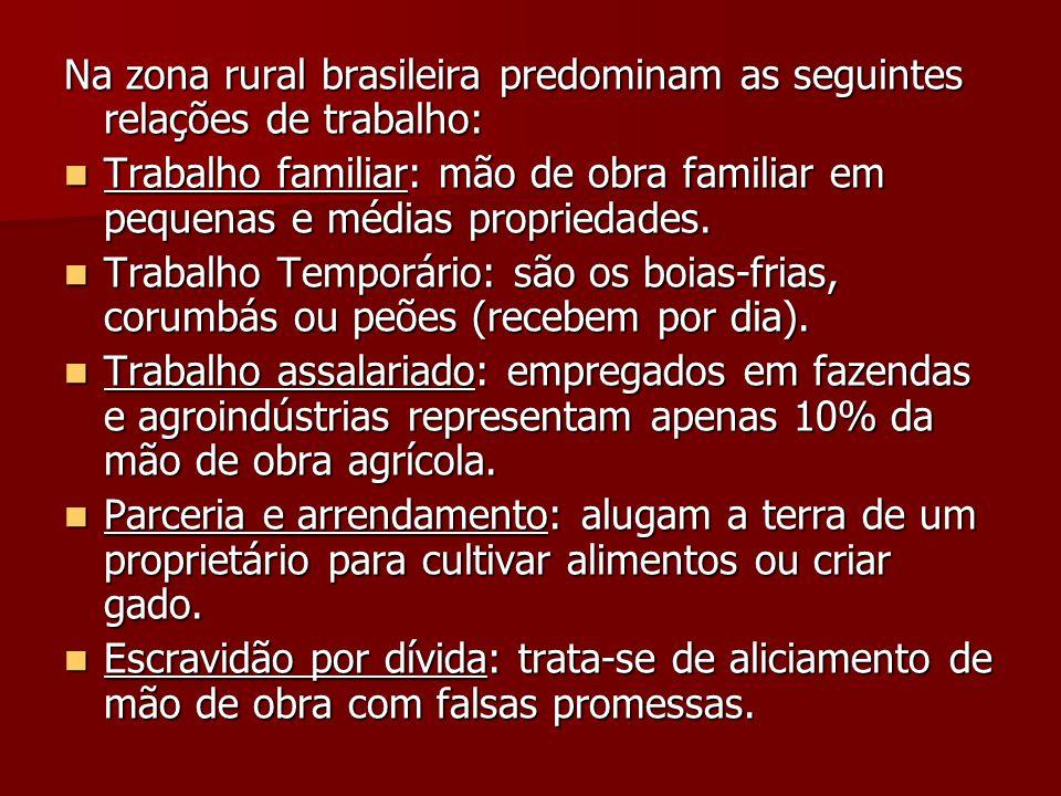 Na zona rural brasileira predominam as seguintes relações de trabalho:  Trabalho familiar: mão de obra familiar em pequenas e médias propriedades. 