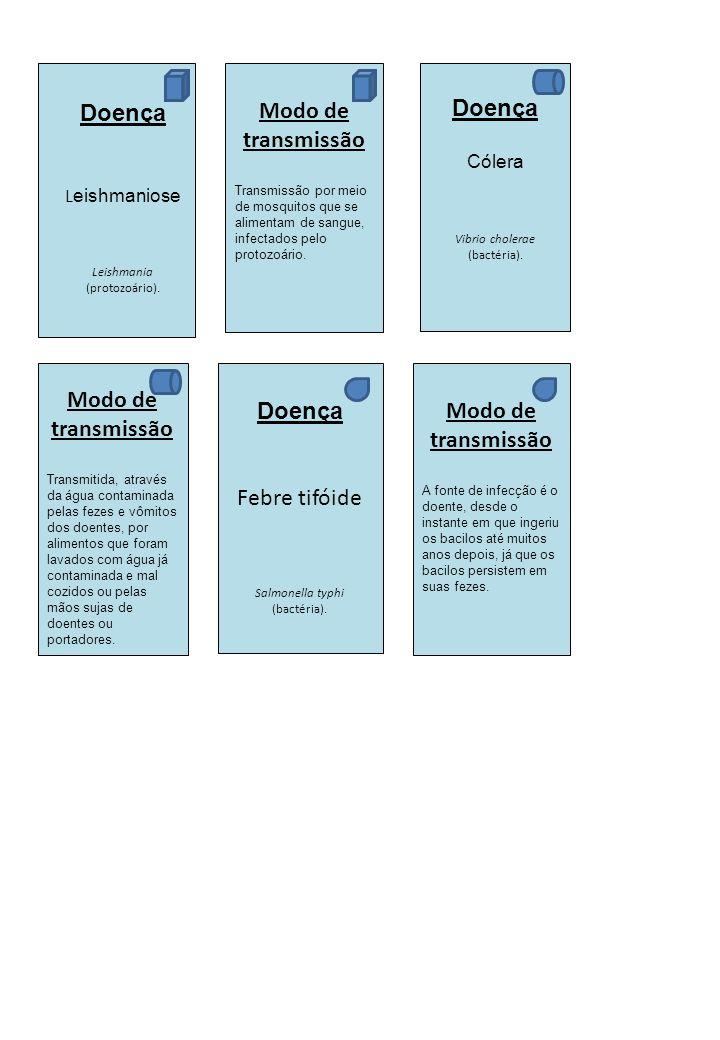 Doença L eishmaniose Leishmania (protozoário). Modo de transmissão Transmissão por meio de mosquitos que se alimentam de sangue, infectados pelo proto