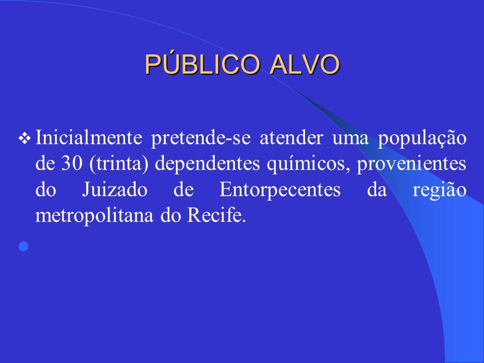 PÚBLICO ALVO  Inicialmente pretende-se atender uma população de 30 (trinta) dependentes químicos, provenientes do Juizado de Entorpecentes da região metropolitana do Recife.