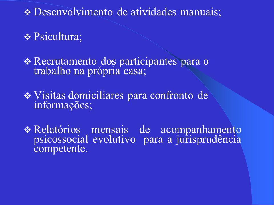  Desenvolvimento de atividades manuais;  Psicultura;  Recrutamento dos participantes para o trabalho na própria casa;  Visitas domiciliares para confronto de informações;  Relatórios mensais de acompanhamento psicossocial evolutivo para a jurisprudência competente.