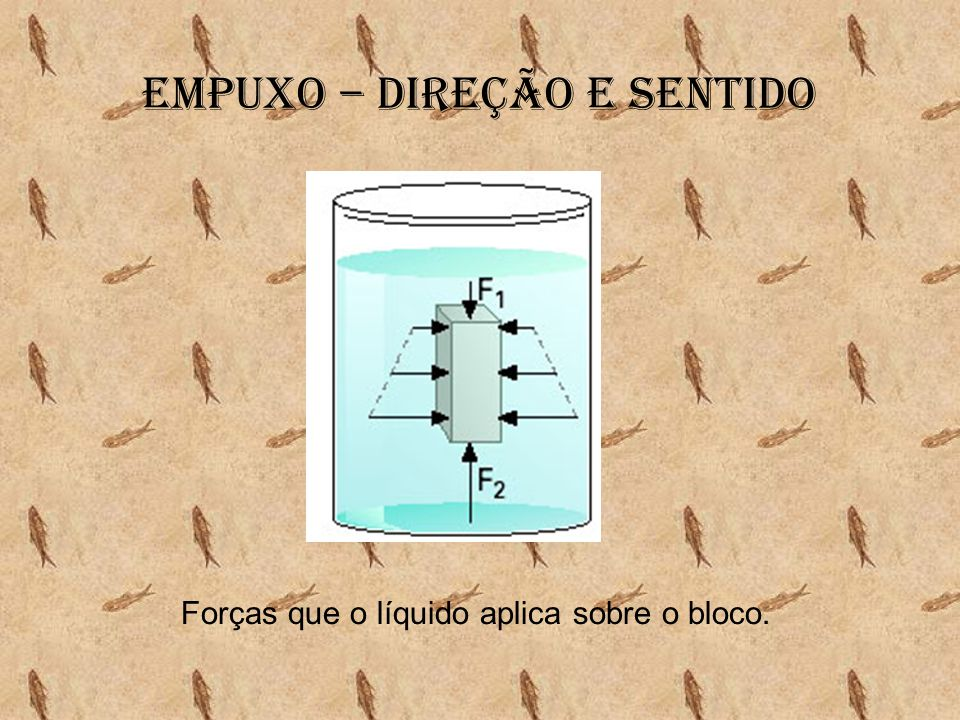 Empuxo – Direção e sentido Forças que o líquido aplica sobre o bloco.