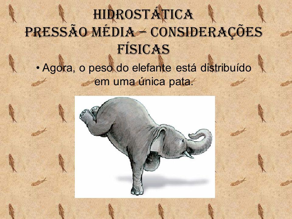 Hidrostática Pressão média – Considerações físicas • Agora, o peso do elefante está distribuído em uma única pata.