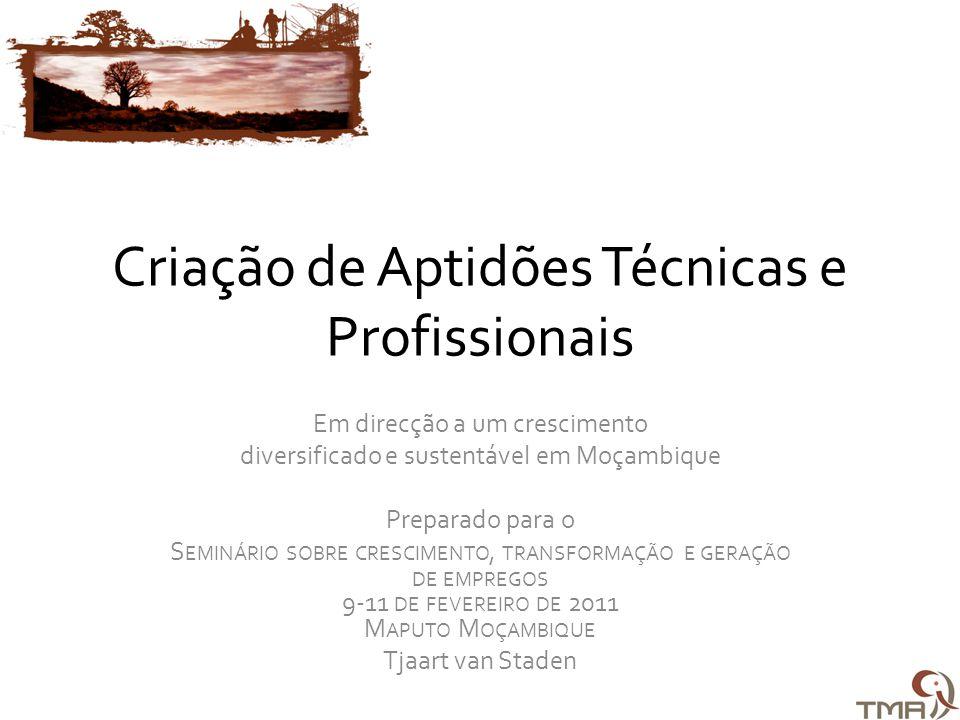 Criação de Aptidões Técnicas e Profissionais Em direcção a um crescimento diversificado e sustentável em Moçambique Preparado para o S EMINÁRIO SOBRE CRESCIMENTO, TRANSFORMAÇÃO E GERAÇÃO DE EMPREGOS 9-11 DE FEVEREIRO DE 2011 M APUTO M OÇAMBIQUE Tjaart van Staden