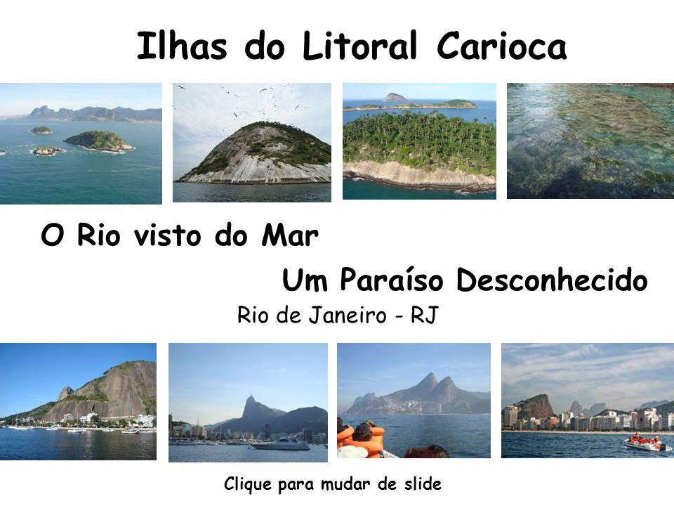 A Baía de Guanabara foi descoberta por uma expedição portuguesa em 1501.