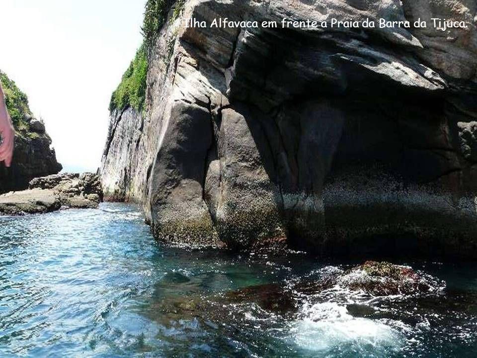 Ilha do Meio