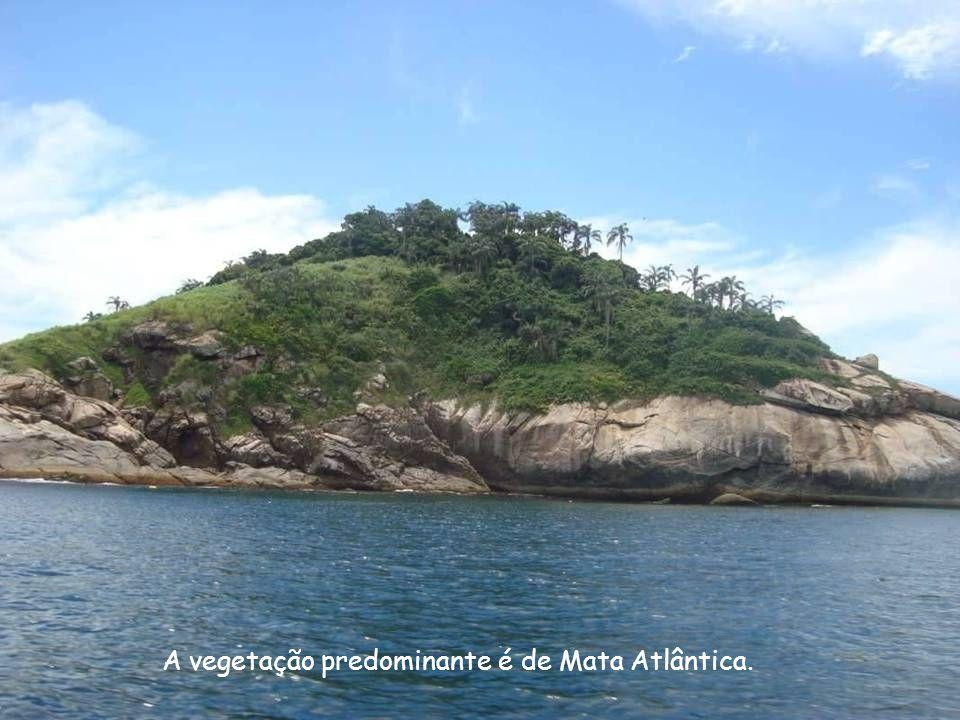 A vegetação predominante é de Mata Atlântica.