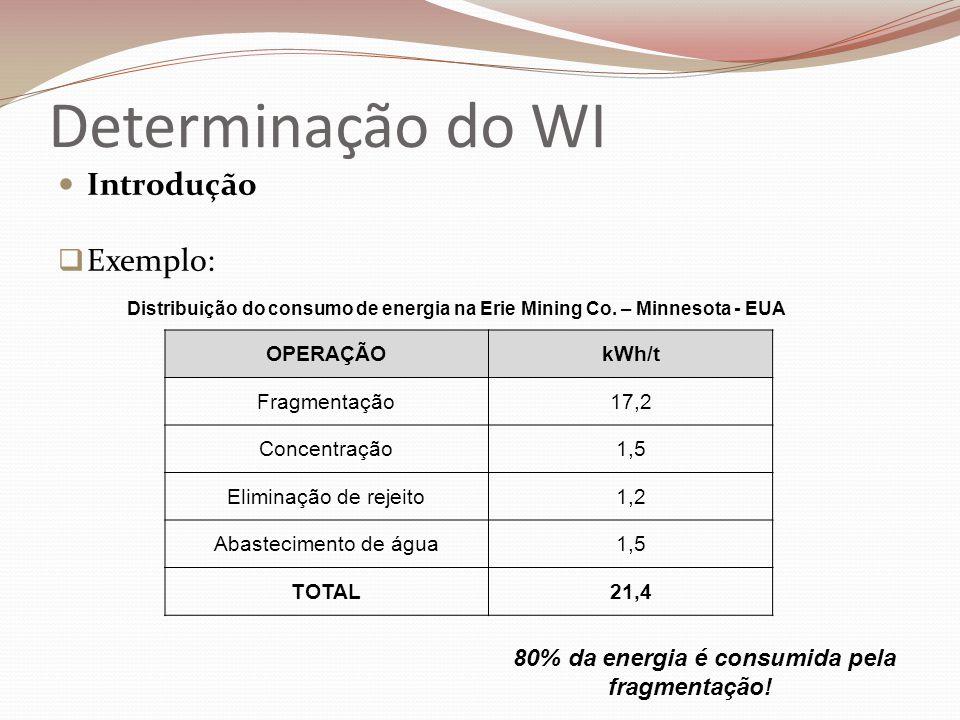 Determinação do WI  Introdução  Exemplo: OPERAÇÃOkWh/t Fragmentação17,2 Concentração1,5 Eliminação de rejeito1,2 Abastecimento de água1,5 TOTAL21,4