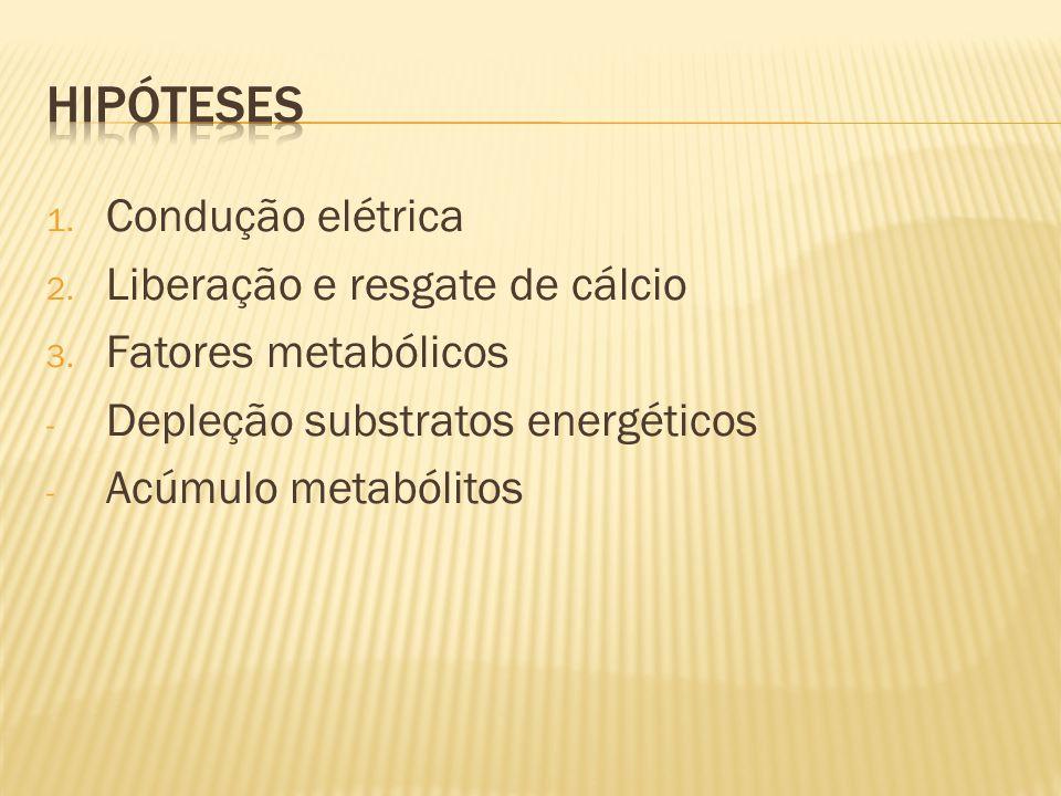1. Condução elétrica 2. Liberação e resgate de cálcio 3. Fatores metabólicos - Depleção substratos energéticos - Acúmulo metabólitos