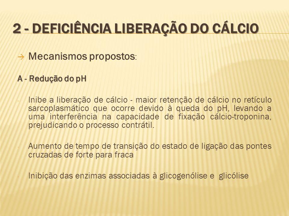 2 - DEFICIÊNCIA LIBERAÇÃO DO CÁLCIO  Mecanismos propostos : A - Redução do pH - Inibe a liberação de cálcio - maior retenção de cálcio no retículo sa