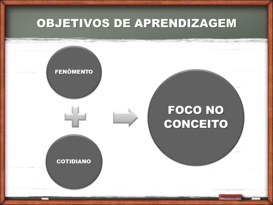 OBJETIVOS DE APRENDIZAGEM FENÔMENTO COTIDIANO FOCO NO CONCEITO