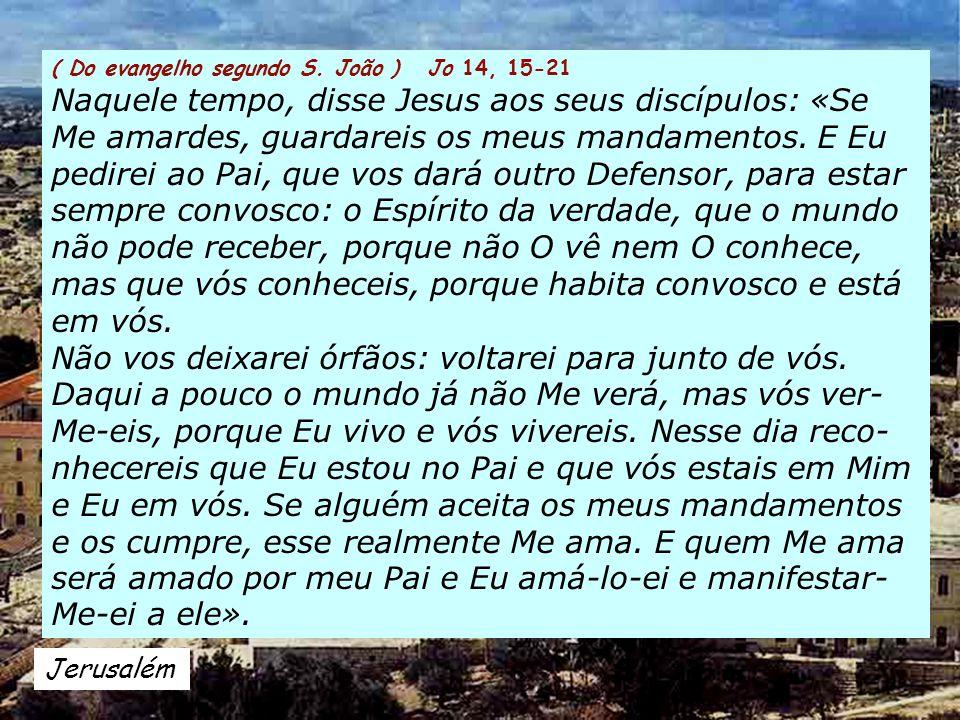Aleluia Jo 14, 23 Se alguém Me ama, guardará a minha palavra, Meu Pai o amará e faremos nele a nossa morada.