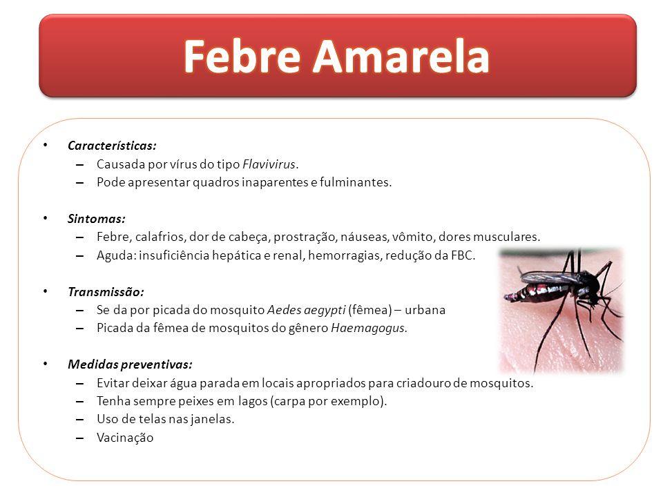 • Características: – Causada por vírus do tipo Flavivirus. – Pode apresentar quadros inaparentes e fulminantes. • Sintomas: – Febre, calafrios, dor de