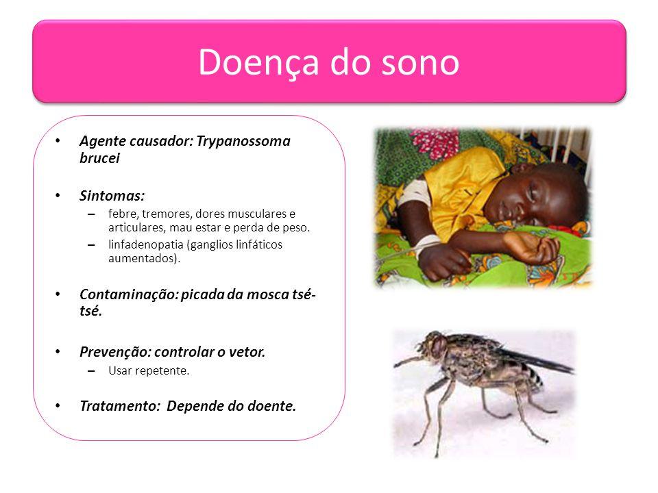 Doença do sono • Agente causador: Trypanossoma brucei • Sintomas: – febre, tremores, dores musculares e articulares, mau estar e perda de peso. – linf