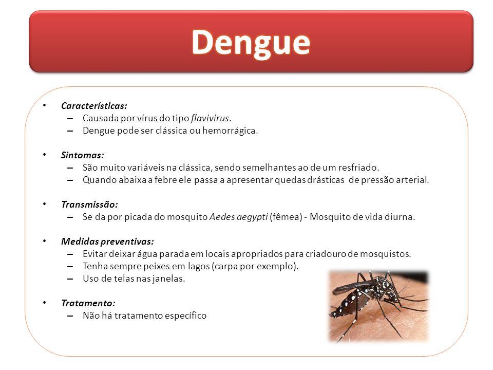 • Características: – Causada por vírus do tipo flavivirus. – Dengue pode ser clássica ou hemorrágica. • Sintomas: – São muito variáveis na clássica, s