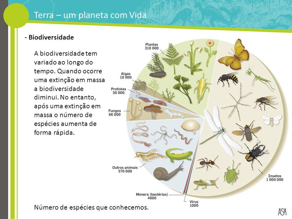 A biodiversidade tem variado ao longo do tempo. Quando ocorre uma extinção em massa a biodiversidade diminui. No entanto, após uma extinção em massa o