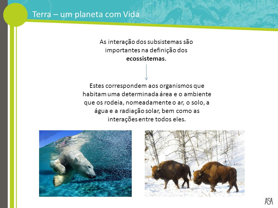 Terra – um planeta com Vida As interação dos subsistemas são importantes na definição dos ecossistemas. Estes correspondem aos organismos que habitam