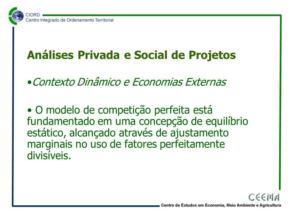 •Contexto Dinâmico e Economias Externas • O modelo de competição perfeita está fundamentado em uma concepção de equilíbrio estático, alcançado através de ajustamento marginais no uso de fatores perfeitamente divisíveis.