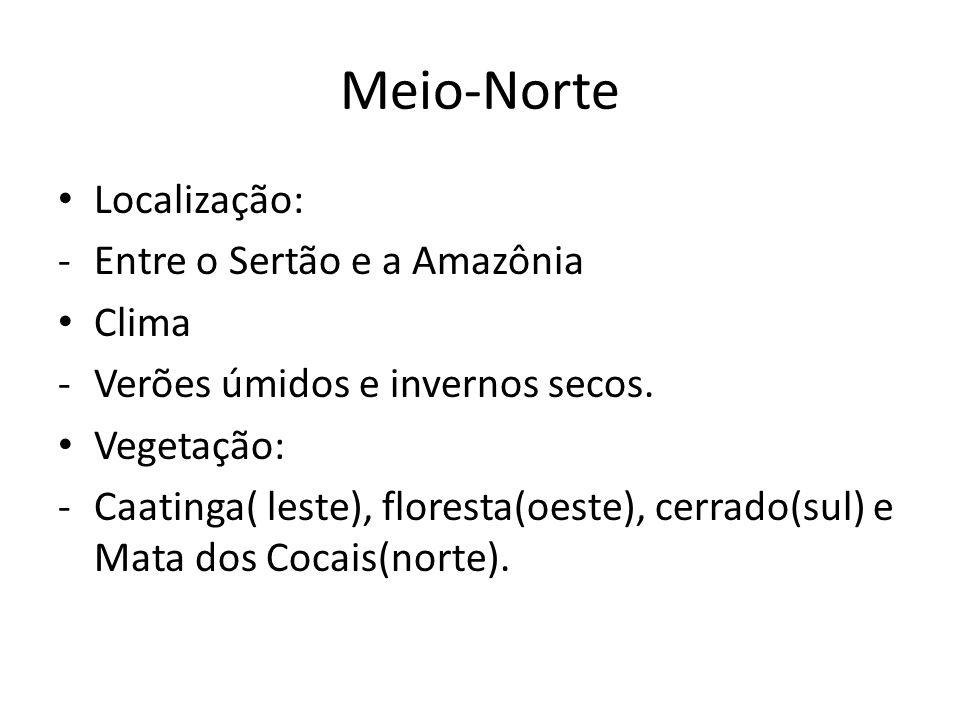 Meio-Norte • Localização: -Entre o Sertão e a Amazônia • Clima -Verões úmidos e invernos secos. • Vegetação: -Caatinga( leste), floresta(oeste), cerra