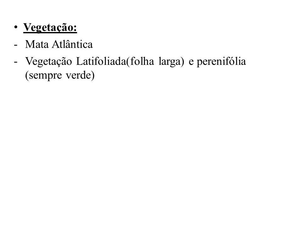 • Vegetação: -Mata Atlântica -Vegetação Latifoliada(folha larga) e perenifólia (sempre verde)