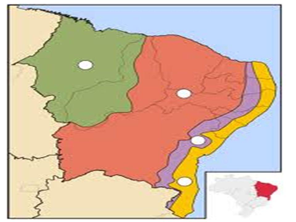 • Economia: -O agreste abastece a Zona da Mata com produtos agrícolas; -Os agricultores do agreste migram para a Zona da Mata no período de colheita da cana.