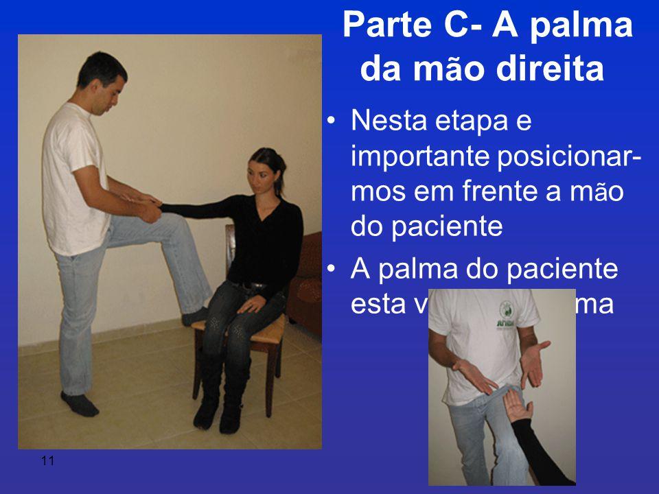 11 Parte C- A palma da m ã o direita •Nesta etapa e importante posicionar- mos em frente a m ã o do paciente •A palma do paciente esta virada pra cima
