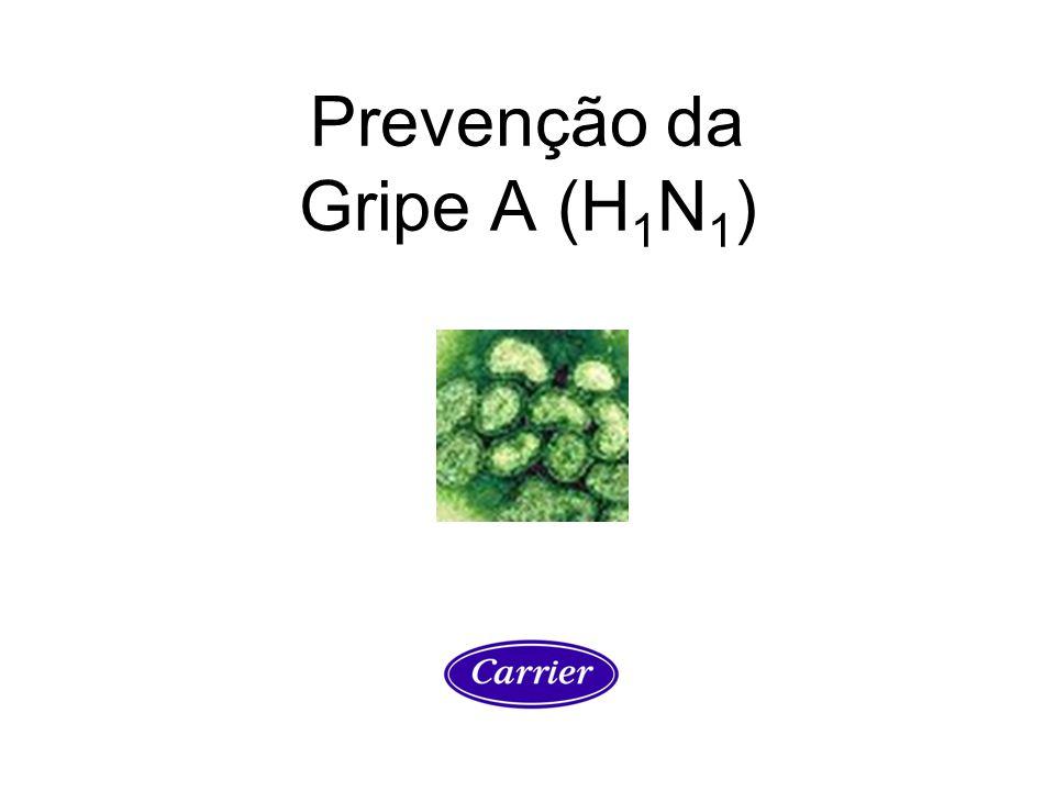 Prevenção da Gripe A (H 1 N 1 )