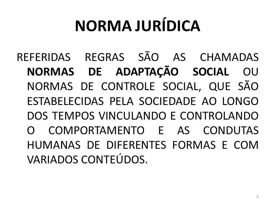 NORMA JURÍDICA REFERIDAS REGRAS SÃO AS CHAMADAS NORMAS DE ADAPTAÇÃO SOCIAL OU NORMAS DE CONTROLE SOCIAL, QUE SÃO ESTABELECIDAS PELA SOCIEDADE AO LONGO
