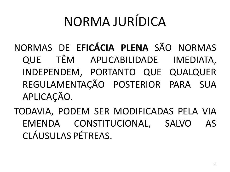 NORMA JURÍDICA NORMAS DE EFICÁCIA PLENA SÃO NORMAS QUE TÊM APLICABILIDADE IMEDIATA, INDEPENDEM, PORTANTO QUE QUALQUER REGULAMENTAÇÃO POSTERIOR PARA SU