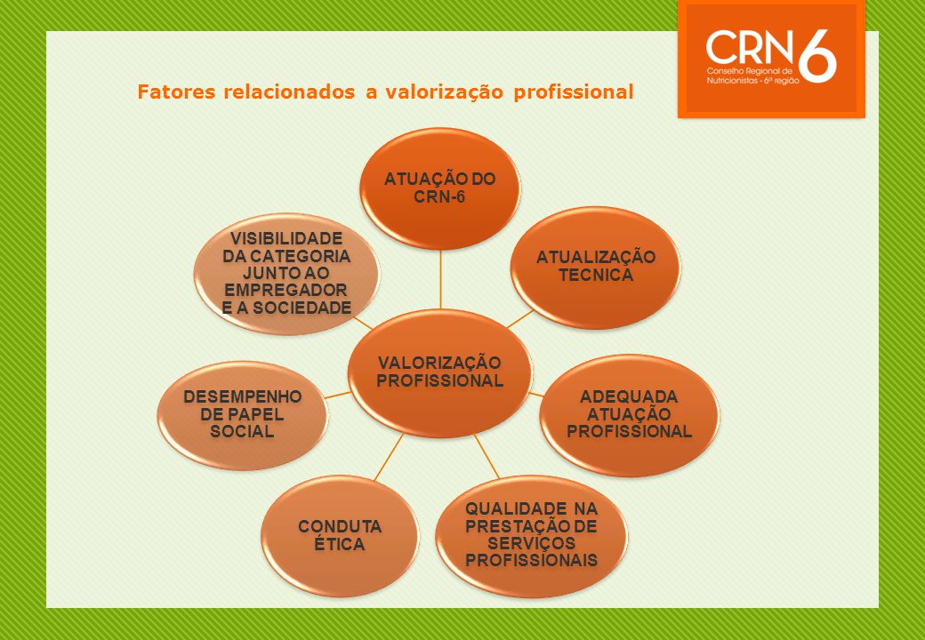 Fatores relacionados a valorização profissional VALORIZAÇÃO PROFISSIONAL ATUAÇÃO DO CRN-6 ATUALIZAÇÃO TECNICA ADEQUADA ATUAÇÃO PROFISSIONAL QUALIDADE