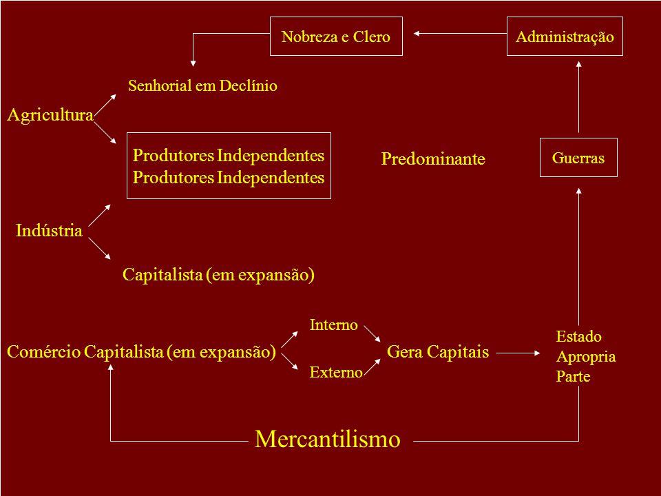 Nobreza e CleroAdministração Guerras Estado Apropria Parte Comércio Capitalista (em expansão) Interno Externo Gera Capitais Indústria Produtores Independentes Predominante Agricultura Senhorial em Declínio Capitalista (em expansão) Mercantilismo