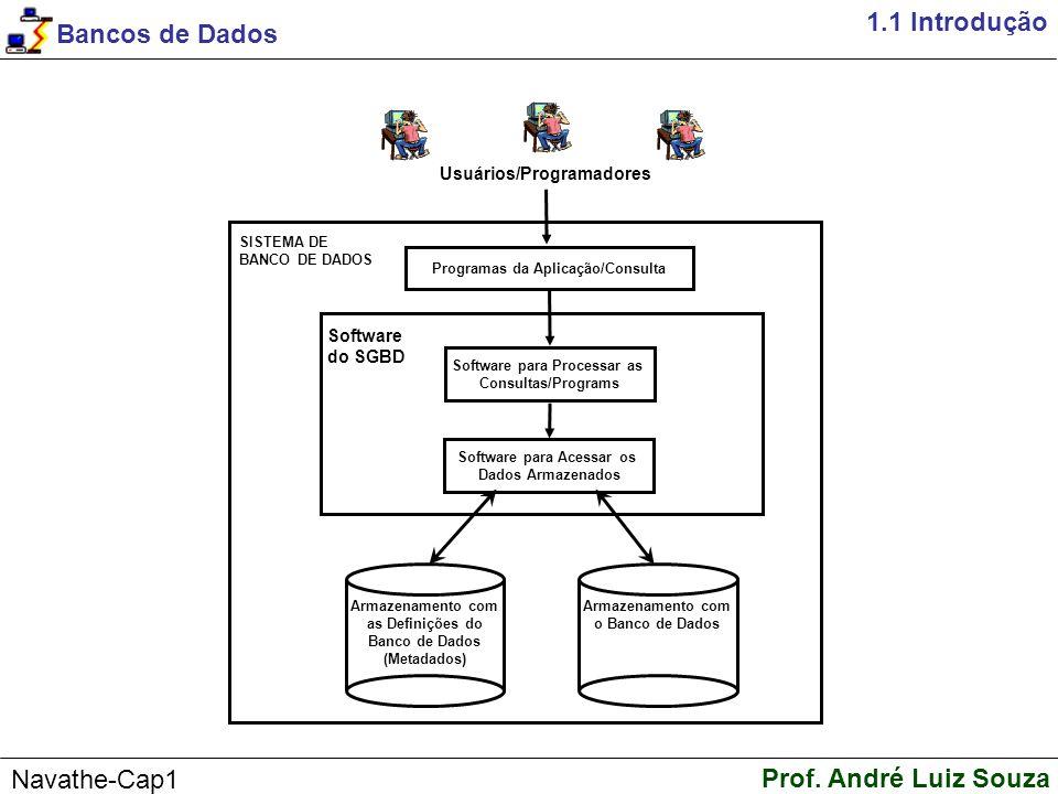 Bancos de Dados Prof. André Luiz Souza Navathe-Cap1 1.2 Um Exemplo