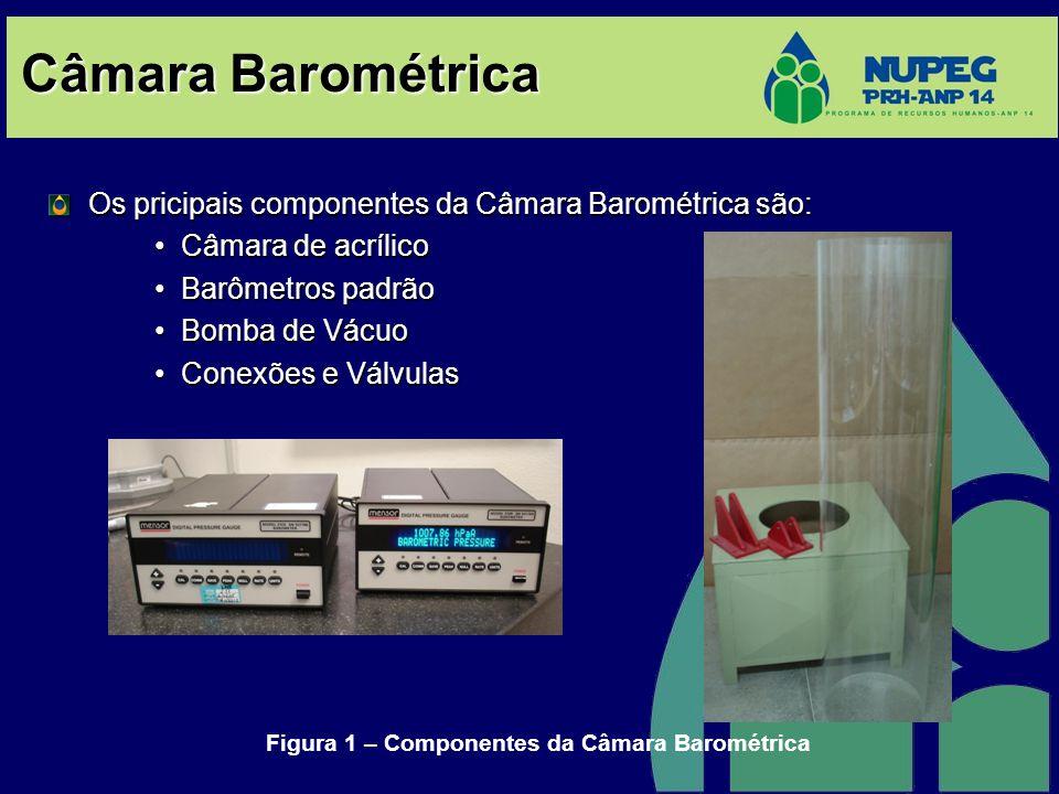 Câmara Barométrica Os pricipais componentes da Câmara Barométrica são: •Câmara de acrílico •Barômetros padrão •Bomba de Vácuo •Conexões e Válvulas Fig