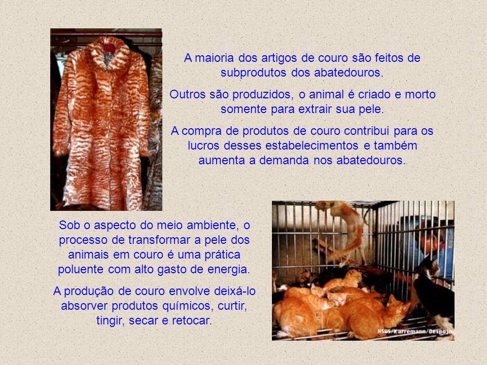 A maioria dos artigos de couro são feitos de subprodutos dos abatedouros.