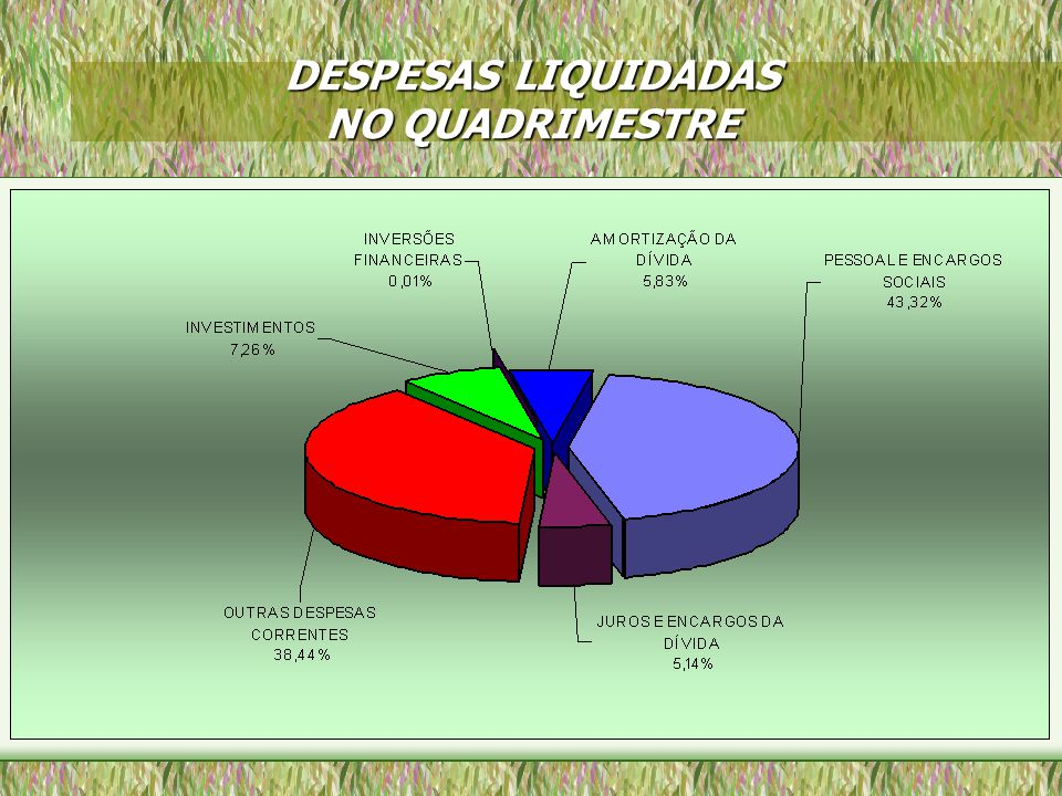 DESPESAS LIQUIDADAS NO QUADRIMESTRE