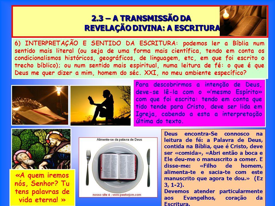 2.3 – A TRANSMISSÃO DA REVELAÇÃO DIVINA: A ESCRITURA 2.3 – A TRANSMISSÃO DA REVELAÇÃO DIVINA: A ESCRITURA Para descobrirmos a intenção de Deus, deve-se lê-la com o «'mesmo Espírito» com que foi escrita: tendo em conta que tido tende para Cristo, deve ser lida em Igreja, cabendo a esta a interpretação última do texto.