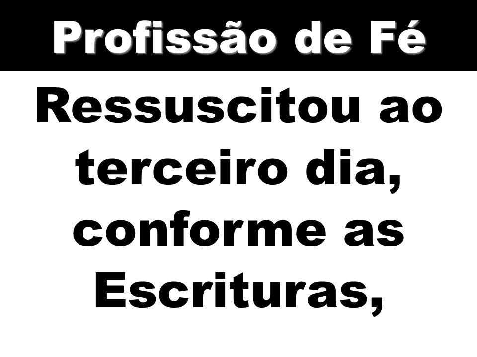 Ressuscitou ao terceiro dia, conforme as Escrituras, Profissão de Fé