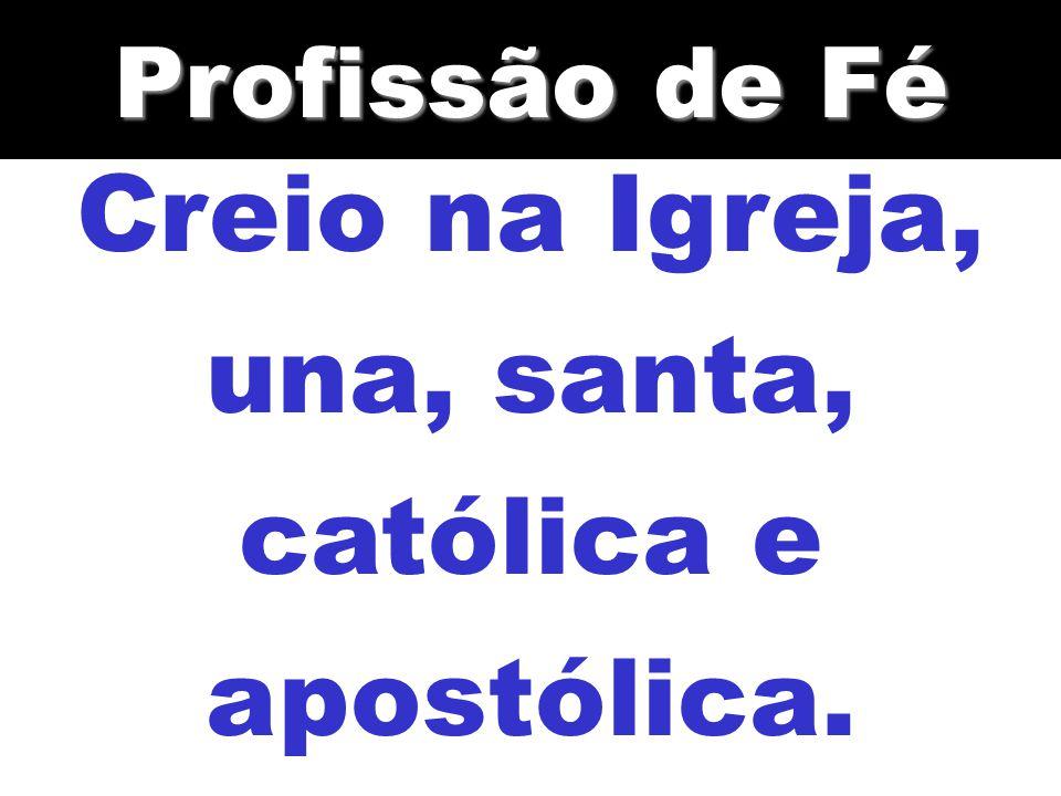 Creio na Igreja, una, santa, católica e apostólica. Profissão de Fé