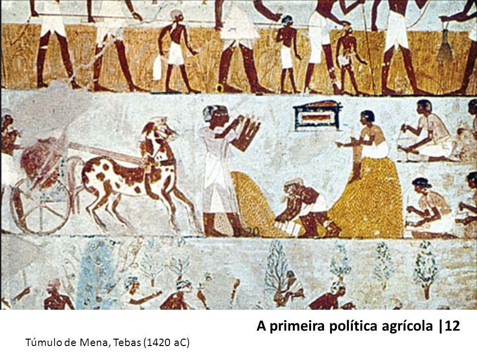 A primeira política agrícola |12 Túmulo de Mena, Tebas (1420 aC)