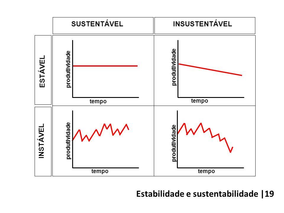 tempo produtividade SUSTENTÁVELINSUSTENTÁVEL ESTÁVEL INSTÁVEL tempo produtividade Estabilidade e sustentabilidade |19
