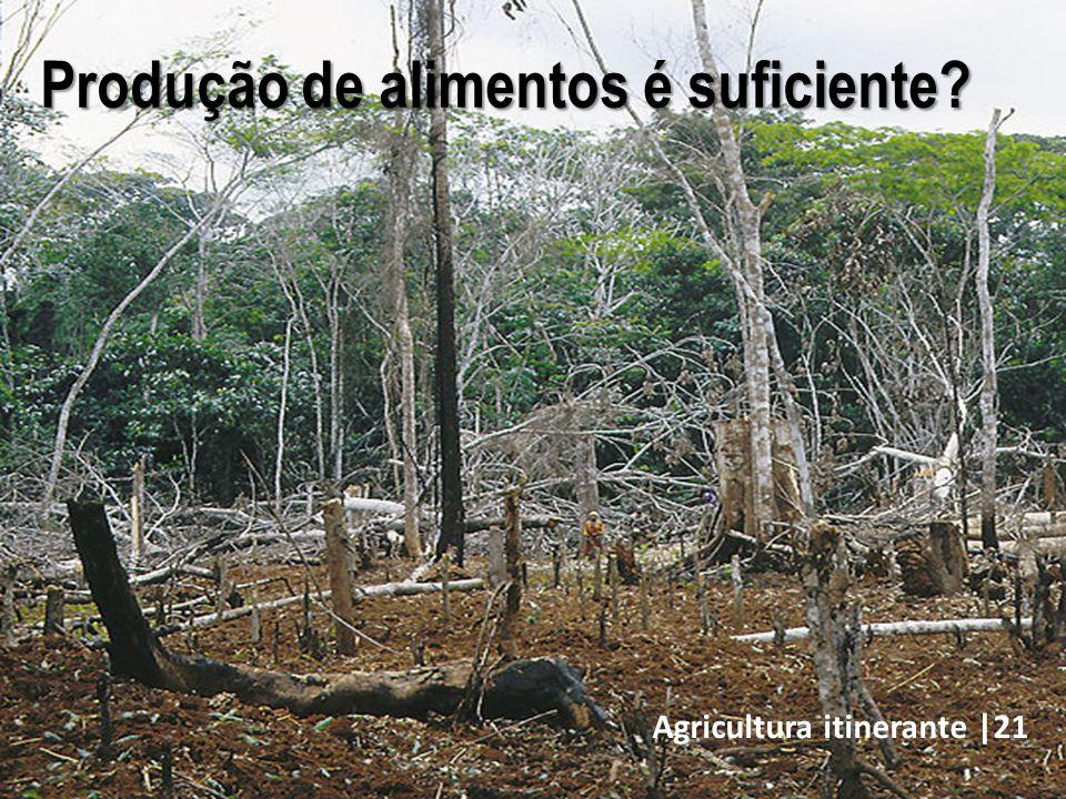 Agricultura itinerante |21 Produção de alimentos é suficiente?