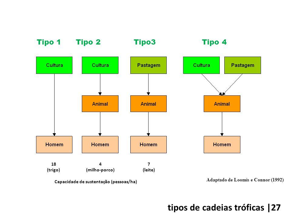 18 (trigo) 4 (milho-porco) 7 (leite) Capacidade de sustentação (pessoas/ha) Tipo 1 Tipo 2 Tipo3 Tipo 4 Adaptado de Loomis e Connor (1992) tipos de cadeias tróficas |27