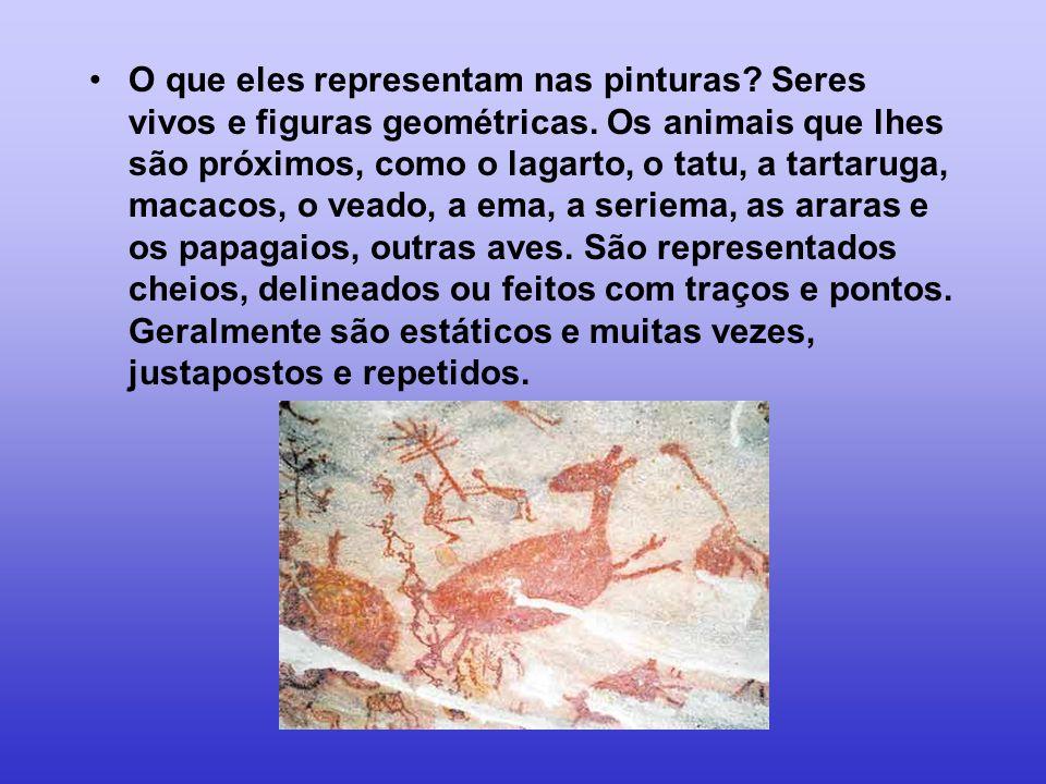 •O que eles representam nas pinturas? Seres vivos e figuras geométricas. Os animais que lhes são próximos, como o lagarto, o tatu, a tartaruga, macaco