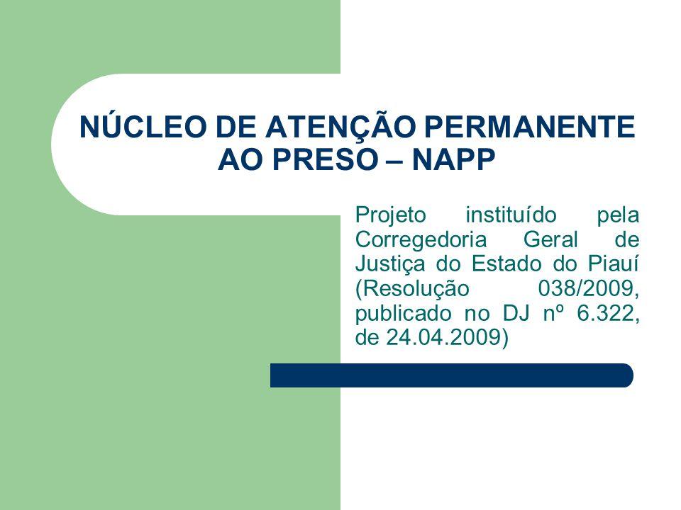 NÚCLEO DE ATENÇÃO PERMANENTE AO PRESO – NAPP Projeto instituído pela Corregedoria Geral de Justiça do Estado do Piauí (Resolução 038/2009, publicado n