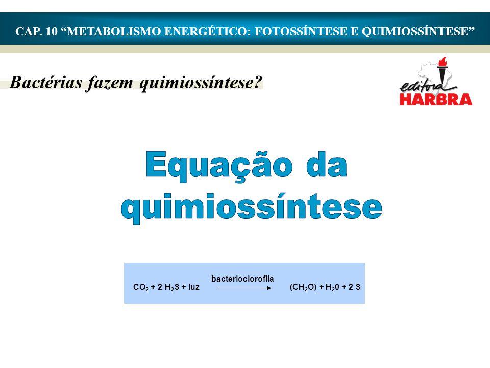 "Bactérias fazem quimiossíntese? CAP. 10 ""METABOLISMO ENERGÉTICO: FOTOSSÍNTESE E QUIMIOSSÍNTESE"" (CH 2 O) + H 2 0 + 2 S bacterioclorofila CO 2 + 2 H 2"