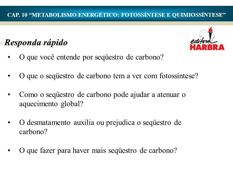 Responda rápido •O que você entende por seqüestro de carbono? •O que o seqüestro de carbono tem a ver com fotossíntese? •Como o seqüestro de carbono p